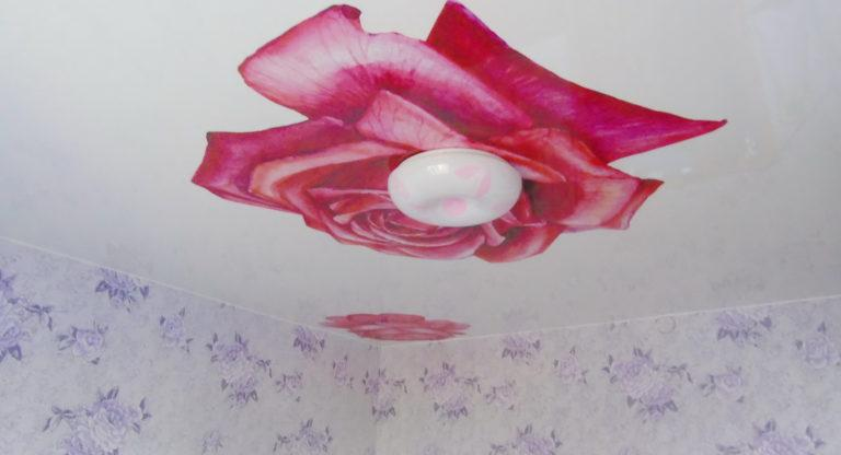 № 66 Глянцевый потолок с фотопечатью в зал
