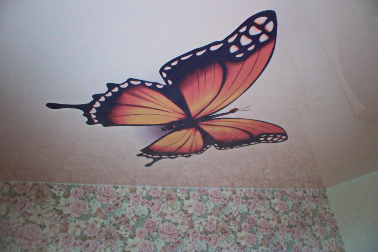 № 62 Потолок в зал бабочка