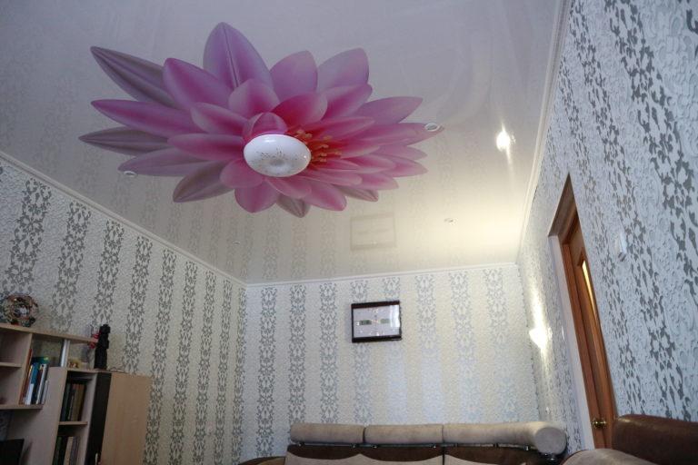 №65 Фотопечать глянец комната