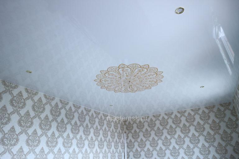 142 Натяжные потолки с фотопечатью глянцевые в комнату