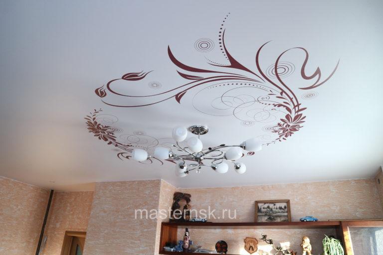 282 Матовый натяжной потолок с фотопечатью в зал Новосибирск